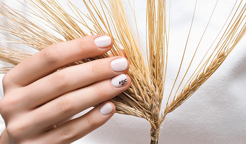 classy-nail-salon-4